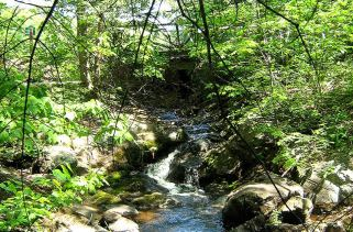 Trillium Resort and Spa; Muskoka Ontario - Modified American Plan