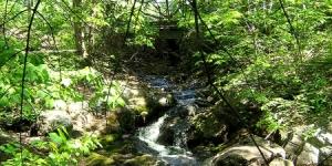 Muskoka Retreat