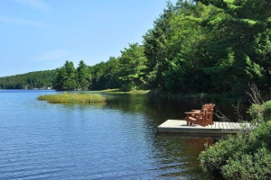 Tranquil Devine Lake